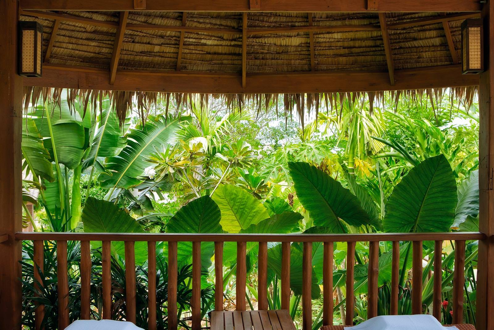 Фотообои вид с балкона в сад.