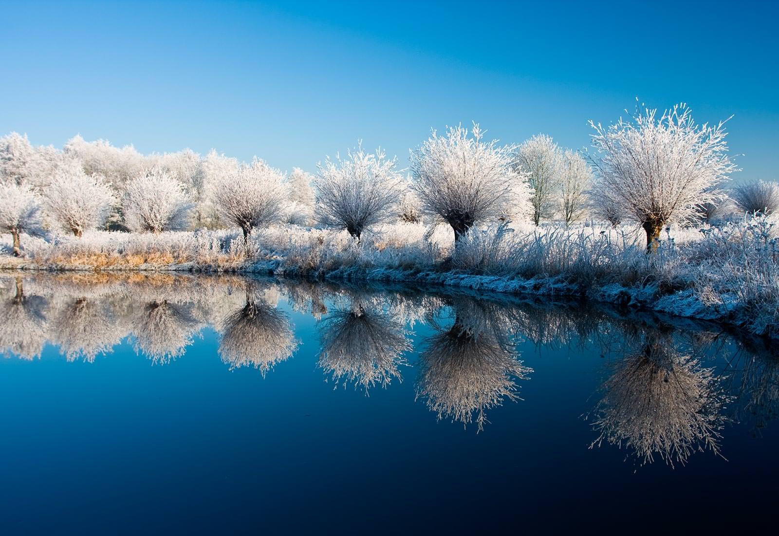 Фотообои на рабочий стол широкоформатные зима