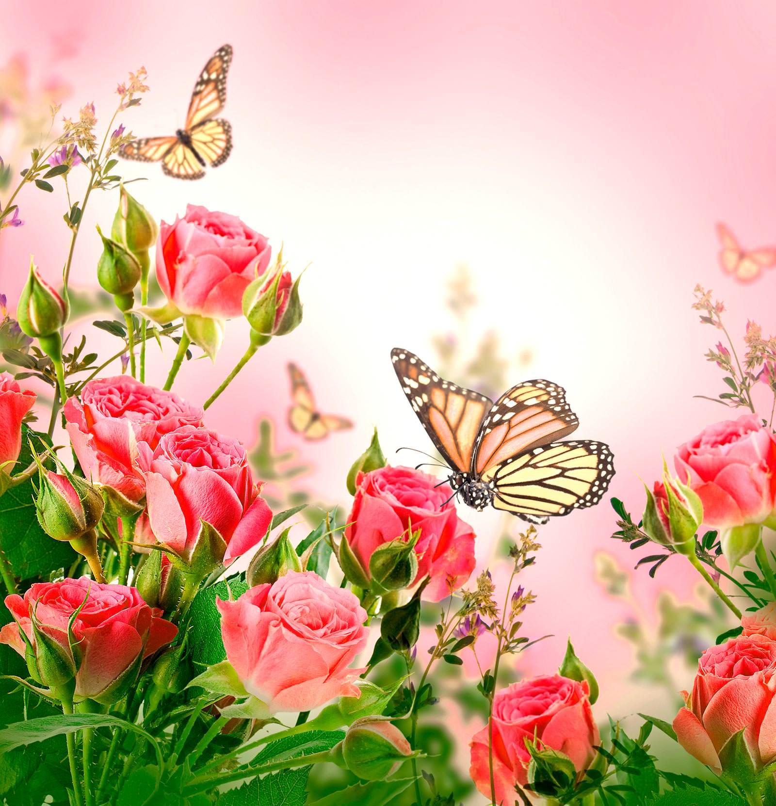 Открытка поздравляем с цветами, день леса