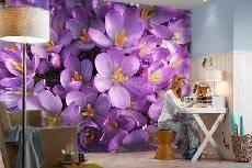 категория 28 фотобои с цветами и растениями