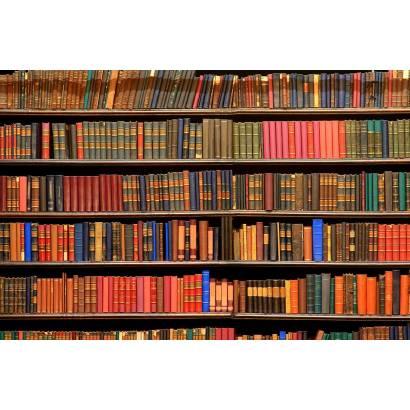 Фотообои Книжная полка. Библиотека | арт.10529