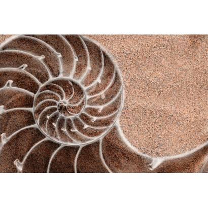 Фотообои Песок | арт.10539