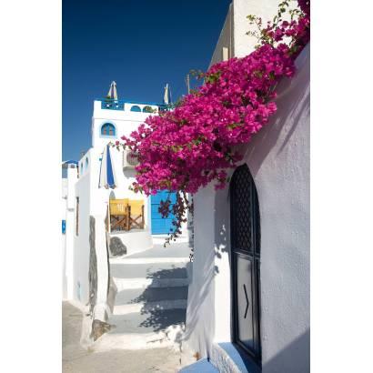 Фотообои Маленькая улочка с розовыми цветами | арт.11162