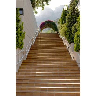 Фотообои Лестница | арт.11236
