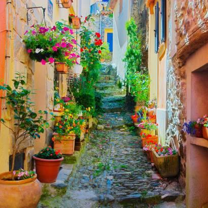 Фотообои Французская улочка в цветах | арт.11256