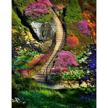 Фотообои Лестница в Сад | арт.11343