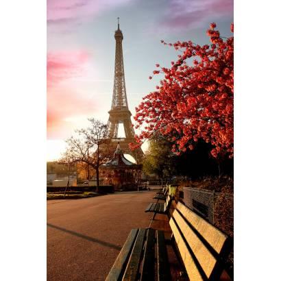 Фотообои Париж | арт.1184
