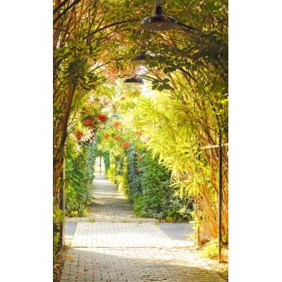 Фотообои Дорожка в цветущем парке | арт.11436
