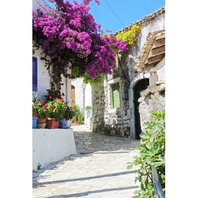Фотообои Улица с цветами | арт.11502