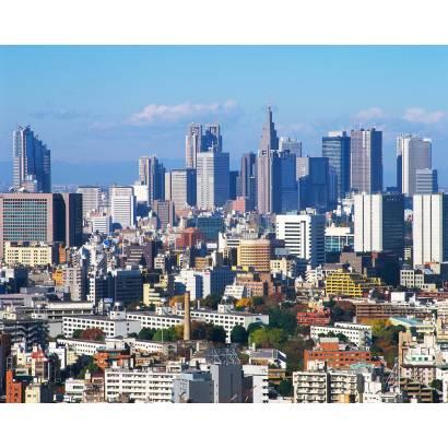 Фотообои Токио | арт.1211