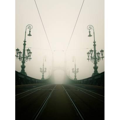 Фотообои Мост Свободы | арт.12113