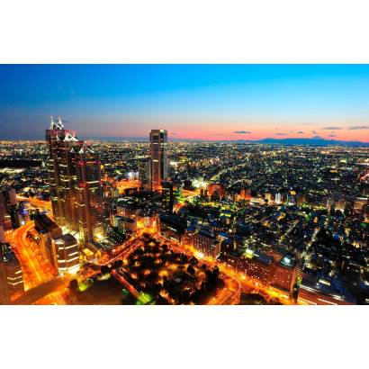 Фотообои Огни мегаполиса | арт.12316