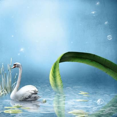 Фотообои Лебедь | арт.14245