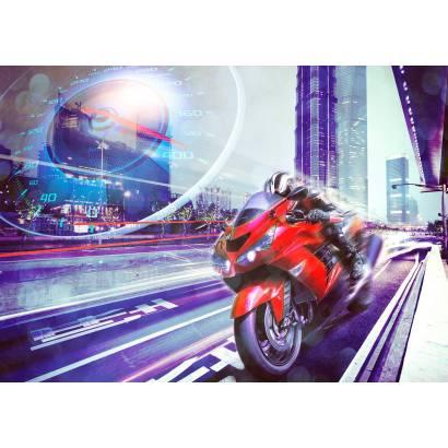 Фотообои Мотоциклист | арт.14396