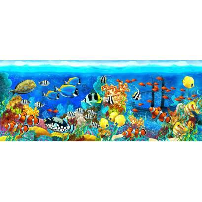Фотообои Подводный мир | арт.14426