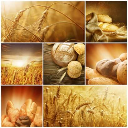 Фотообои Хлеб | арт.15118