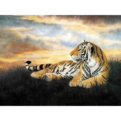 Фотообои Тигр | арт.16124