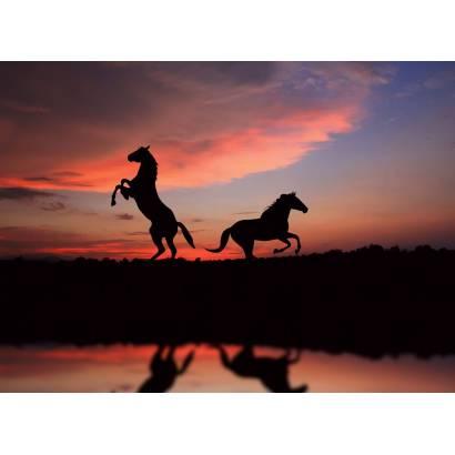 Фотообои Лошади на Закате | арт.16299