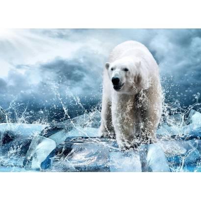 Фотообои Белый медведь на льдине | арт.16333