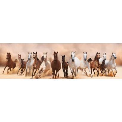 Фотообои Табун лошадей | арт.16335