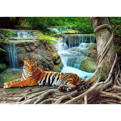 Фотообои Тигр у водопада | арт.16339
