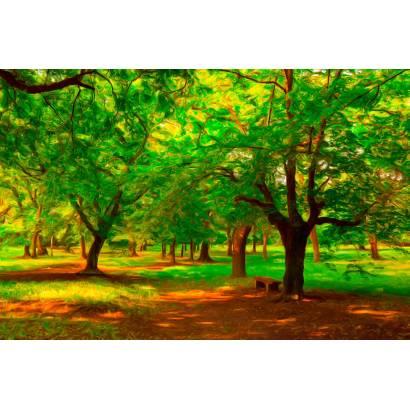 Фотообои В летнем лесу | арт.1729