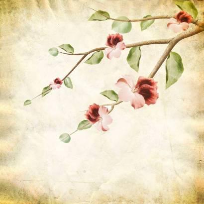 Фотообои Цветочная ветвь | арт.1730