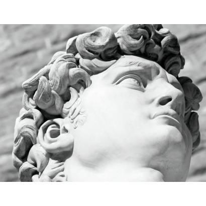 Фотообои Голова Давида   арт.1734
