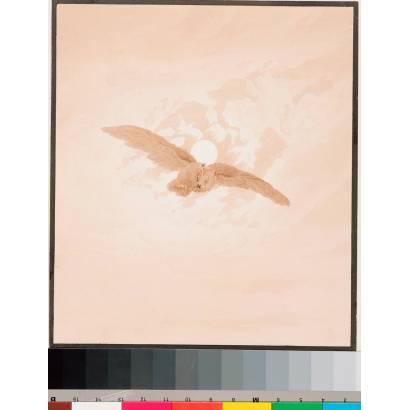 Фотообои Полет Совы В Лунном Небе | арт.18180