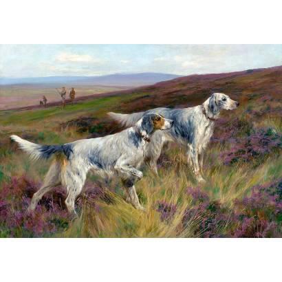 Фотообои Гончие собаки | арт.18342