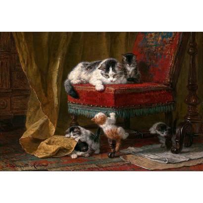 Фотообои Играющие котята | арт.18345