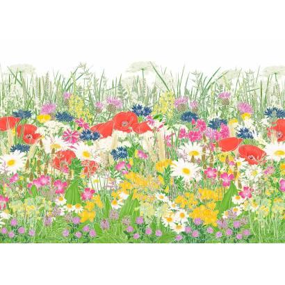 Фотообои Полевые цветы | арт.18411