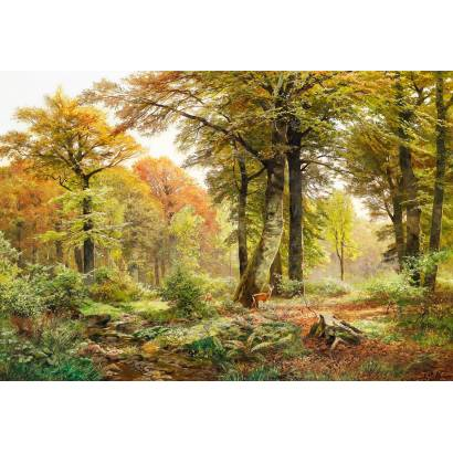 Фотообои Зеленый лес | арт.18418