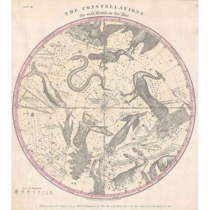 Фотообои Карта Астрономии и Астрологии | арт.1974