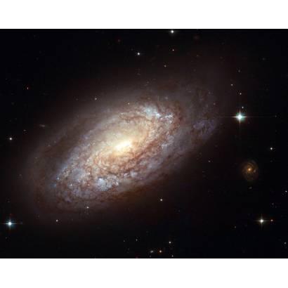 Фотообои Маленькая галактика | арт.2037