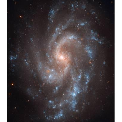 Фотообои Спиральная Галактика | арт.2048