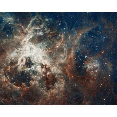 Фотообои Галактика Сигара | арт.2052
