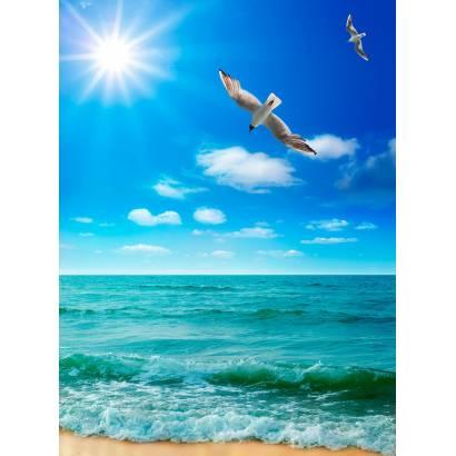 Фотообои Морские Птицы | арт.2114