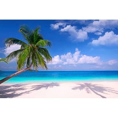 Фотообои Пляж | арт.2185