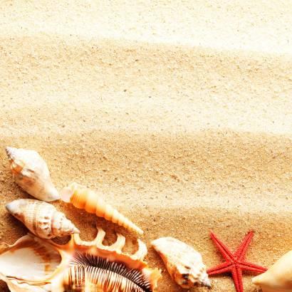Фотообои Пляж | арт.21171