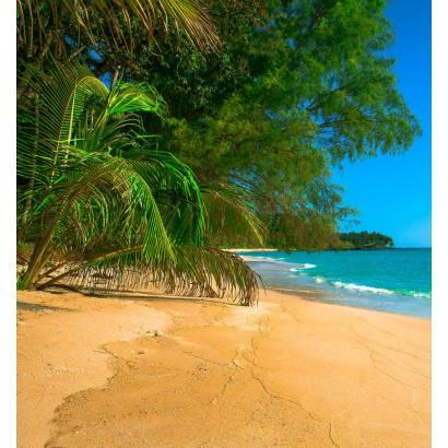 Фотообои Песчаный берег | арт.21209