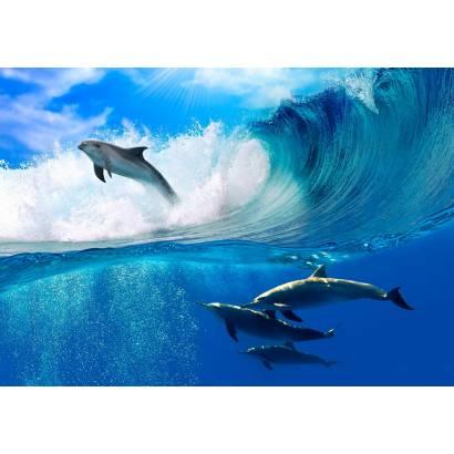 Фотообои Дельфины в море | арт.21227