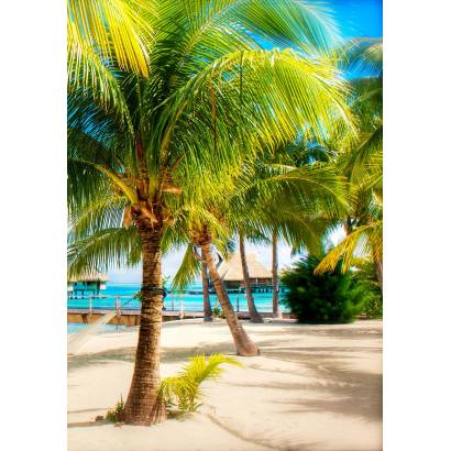 Фотообои Пальмы на пляже | арт.21243