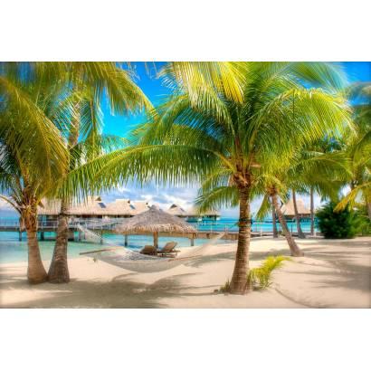 Фотообои Пальмы на пляже | арт.21252