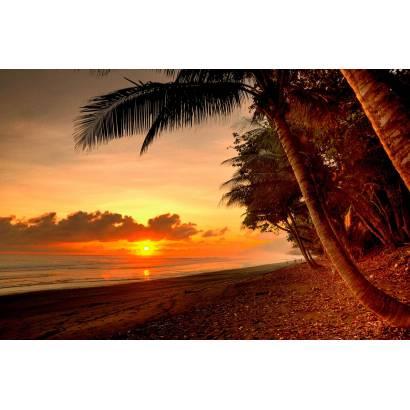 Фотообои Закат на море | арт.21254