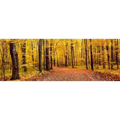 Фотообои Панорама Осень   арт.2215
