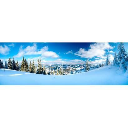 Фотообои Зимняя панорама | арт.2218
