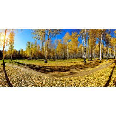 Фотообои Осенняя улыбка | арт.2255
