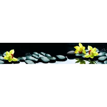 Фотообои Орхидеи | арт.2274