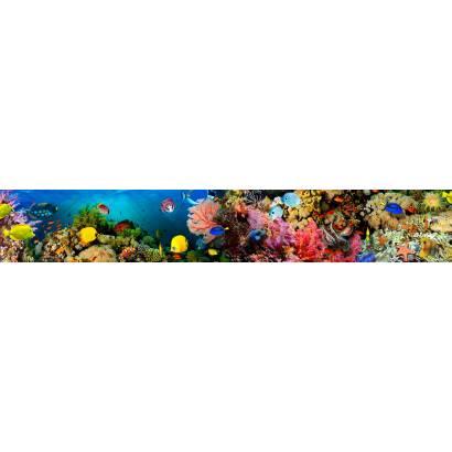Фотообои Подводный мир | арт.2278